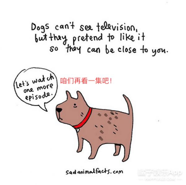 这9个关于动物的冷知识你需要看看
