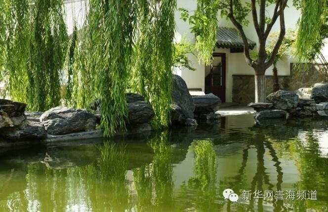 """今年海棠花展以""""中国梦,海棠情""""为主题,讴歌时代旋律,品鉴海棠情怀."""