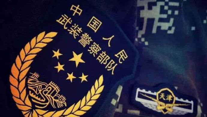 """""""中国人口普查—2019""""标诛_国徽象征国家,以飘带组成\"""