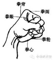 简笔画 教学图示 手绘 线稿 220_250图片