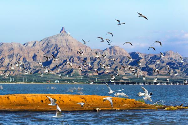 乌海美丽风景图