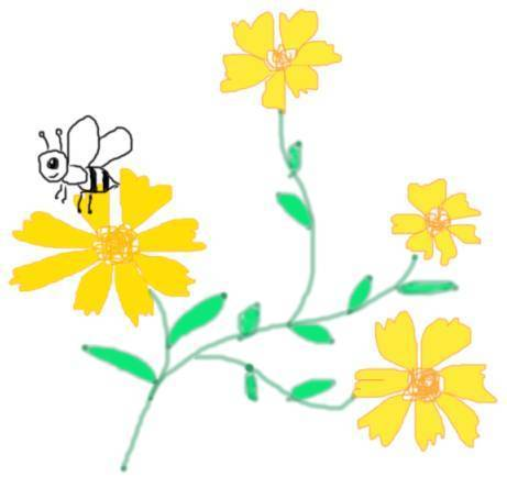 我是一只小蜜蜂, 飞来飞去花丛中, 花儿放光彩,花儿多高兴, 采蜜不怕图片