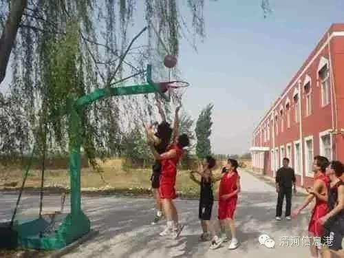 清河挥公v中学中学2016年初中面向全国开始招化学教案初中-空气图片