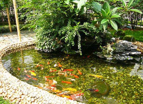 90 的人不知道的花园水景设计技巧