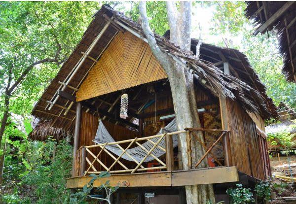 专家:木结构建筑耐久性差