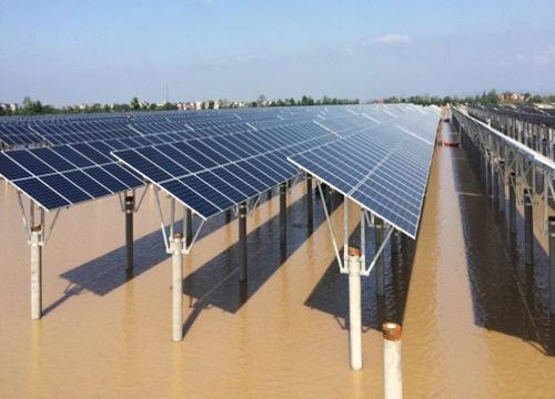 模式,不但直接推动我国水产养殖的转型升级,还大大加快我国能源结构调