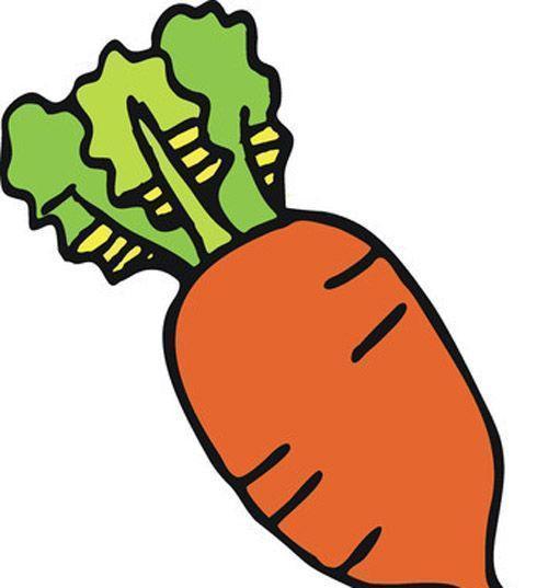 萝卜素描图片步骤图解