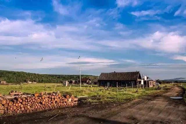 草地,小木屋,屋前的木栅栏,屋边的牛,狗,很不真实.