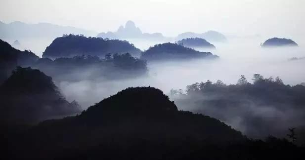 九重山拥有丰富的动植物资源,已知的野生动物248种.