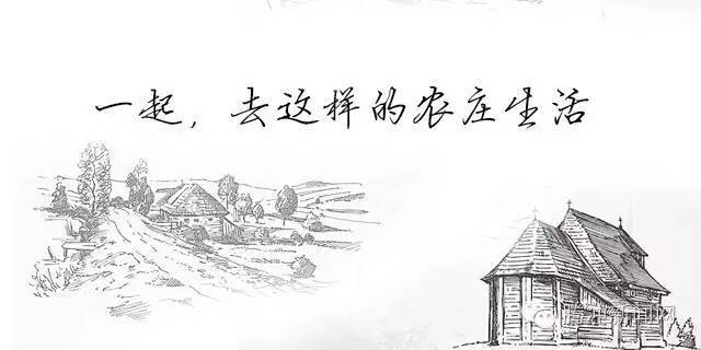 黑白色手绘田野