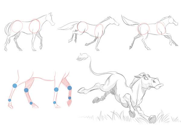 7.有蹄类动物的运动方式