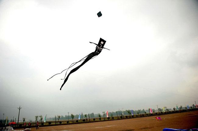 """2016""""八里河杯""""全国运动风筝巡回赛正式开幕"""
