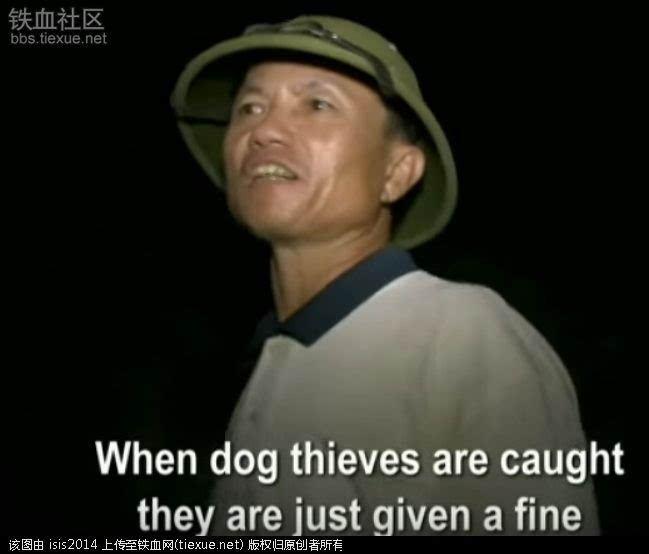 (外媒关注)越南狗肉文化,中国人又怎样看待?讨