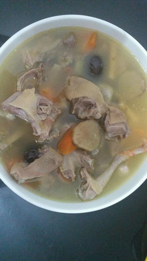 野鸽子汤的做法与功效 日常进补首选鸽子汤
