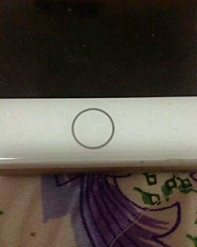 iPhone 7白色版真机首曝光:Home键大改变的照片 - 1
