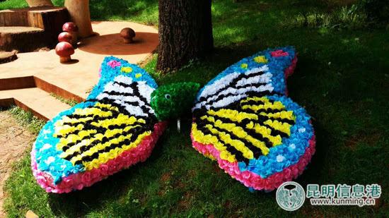 蜜蜂蝴蝶手工制作图片