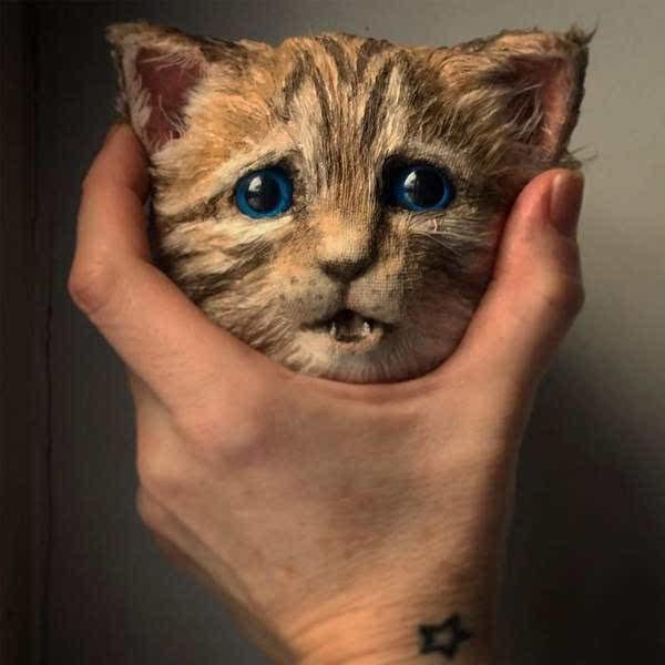 啊…可是用手抓着这种表情的动物头看起来很像是把