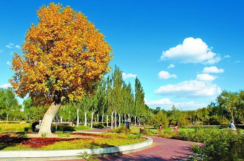 """乌海植物园,惬意的""""十分钟""""休闲圈. 《乌海日报》记者颜慧摄"""