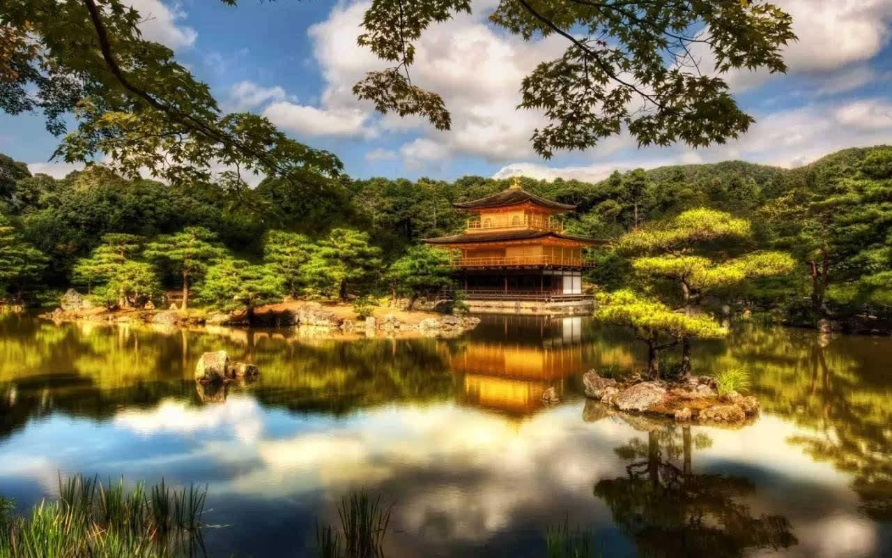 弘益传世游学 京都   八月,精细研修日本茶花香生活
