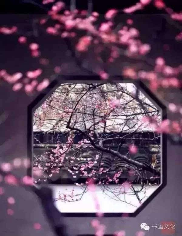 精美文章   一帘幽梦 付娜 - 古筝鉴赏