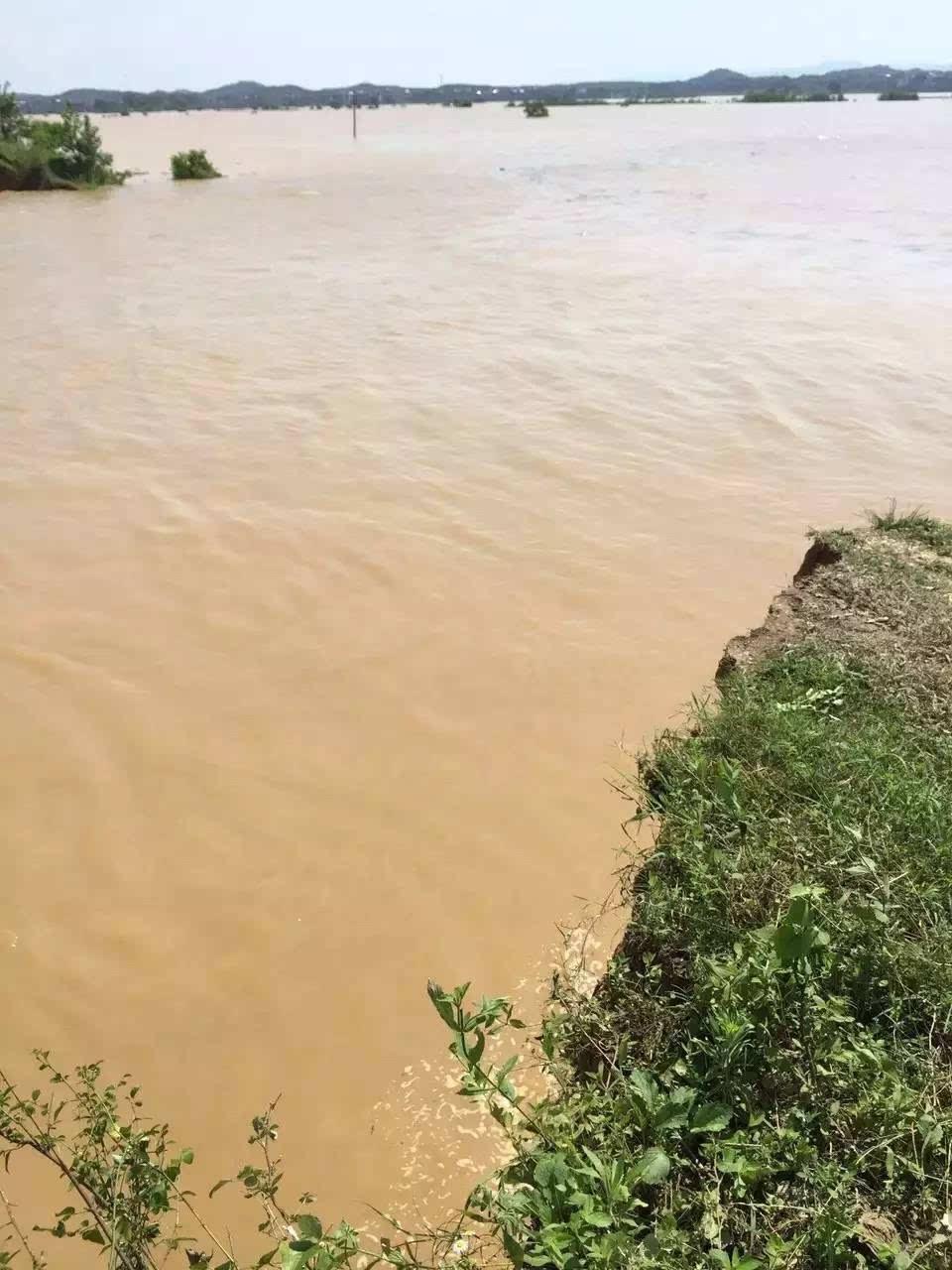 突发!鄱阳河堤溃口5600多人被困,江西450名消防勇士驰援!