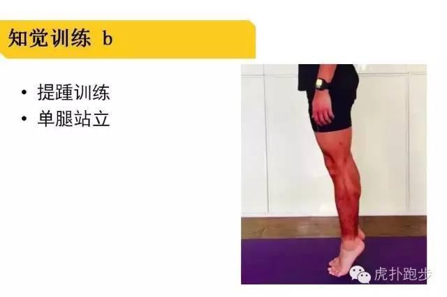 脚掌骨骼图解结构图