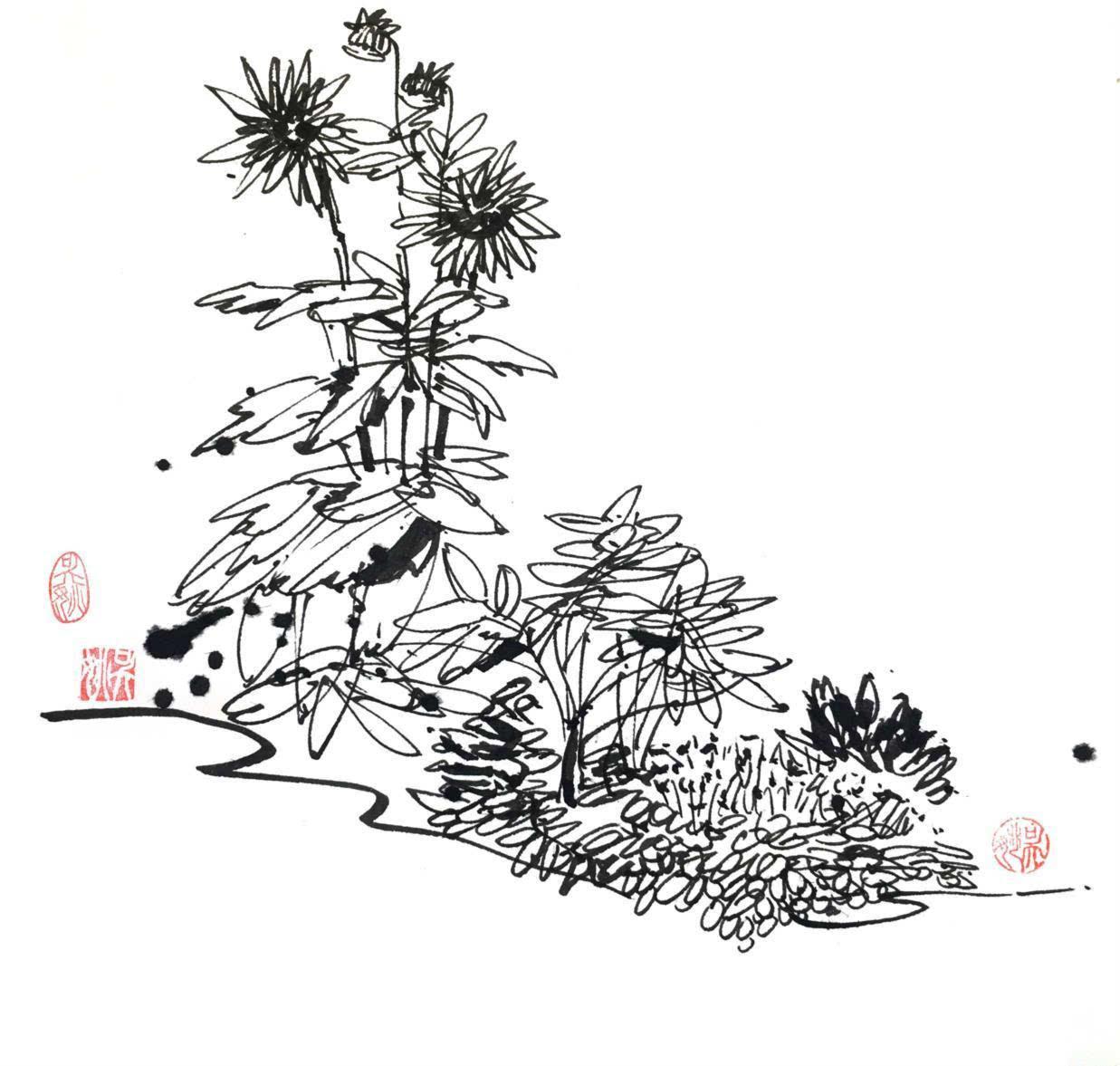花池效果图手绘
