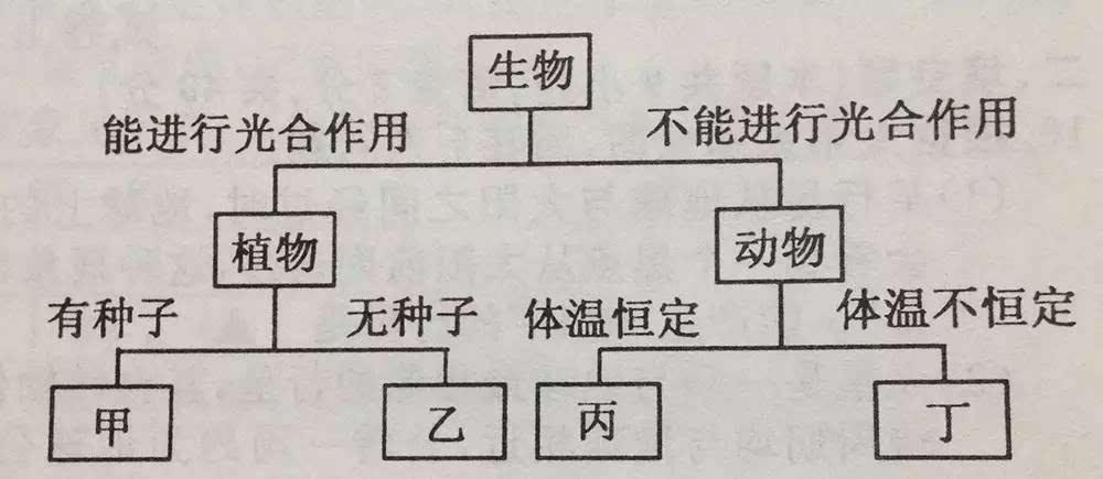 电路 电路图 电子 户型 户型图 平面图 原理图 1000_435