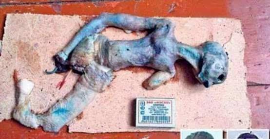 俄罗斯学生在ufo坠毁地发现外星人尸体