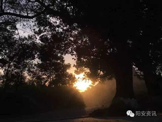 阳安风景之走在乡间的小路上,沉醉在美景中