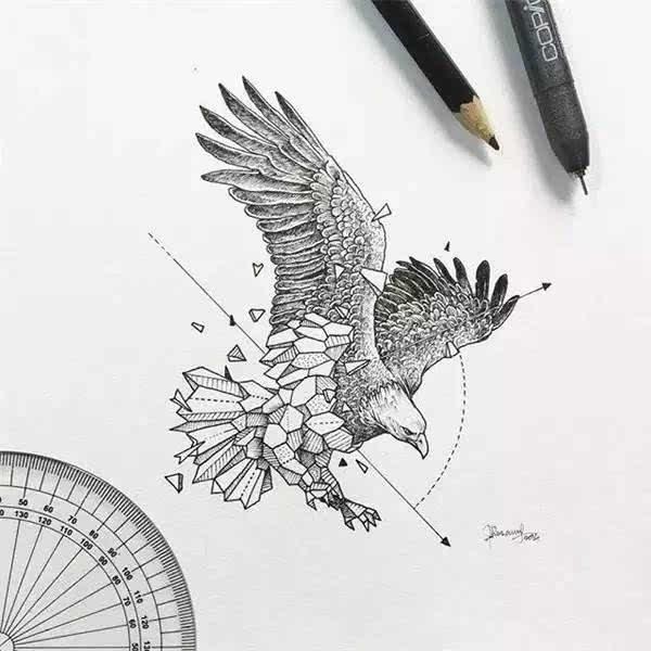 动物可以这样画?