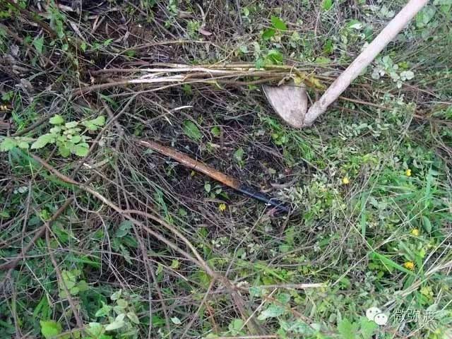 弥渡县公安局打掉一个抢劫图纸近日,弥渡县公cav音响av786786a团伙图片