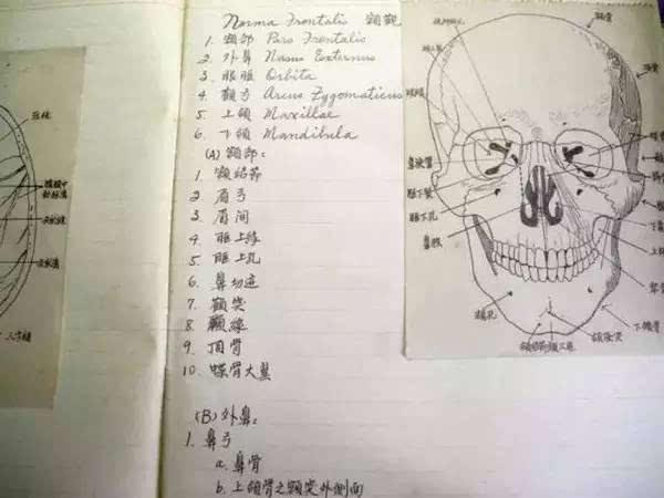 学好高中英语,从学会记笔记开始!