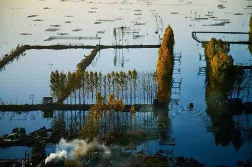 弹起我心爱的土琵琶》,歌词中的微山湖就是位于山东济宁市的微山湖
