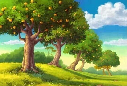 会说话的大树,看完酸酸的... - 清 雅 - 清     雅博客