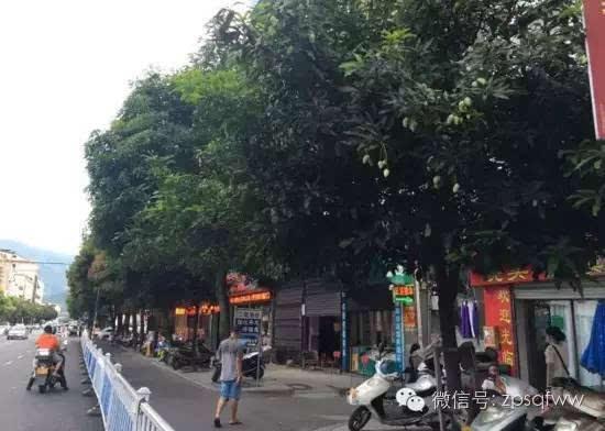 街头现美味水果这种漳平人可千万别吃!西安赛格小寨图美食图片