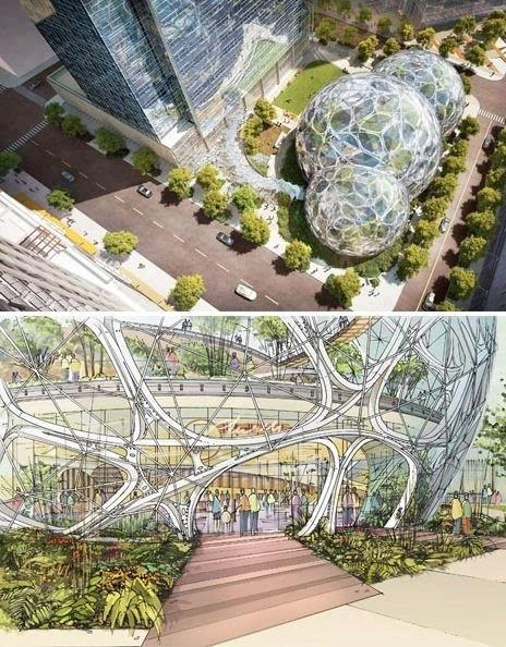 亚马逊新总部图赏:超过300种植物像参观植物园的照片 - 4