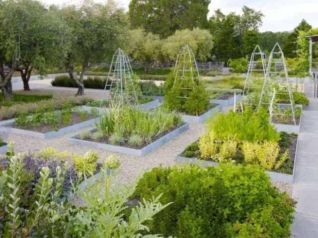 小庭院种菜设计实景图