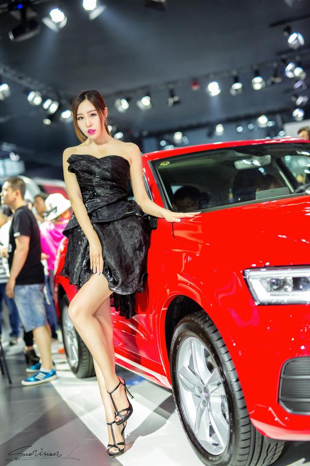 2016.6 沈阳国际车展图片