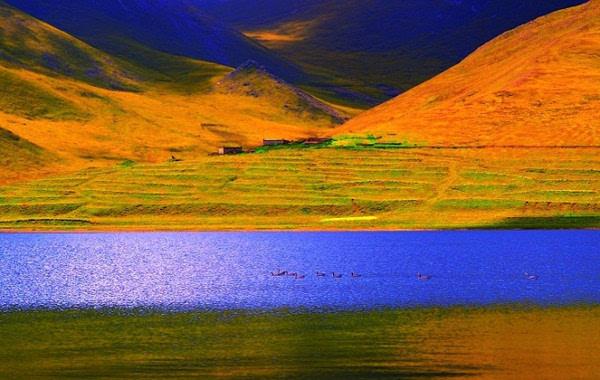 小提琴曲 康定情歌 ,附中国最美西藏摄影,美醉了