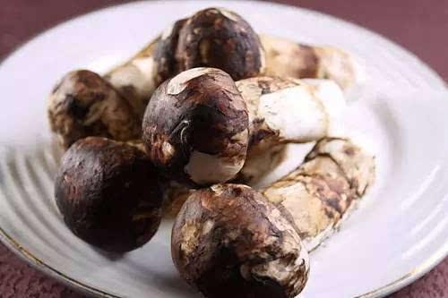 """也各有特色,如冷拼""""迎客松""""、土司干巴菌、松茸炖乳鸽.凉拌松茸"""
