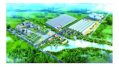 绿色硅谷科技园等十个现代农业项目落户西海岸