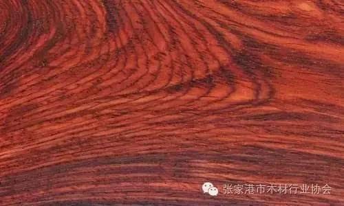 [涨知识]从红木木材的纹理上看透酸枝木的产地源处