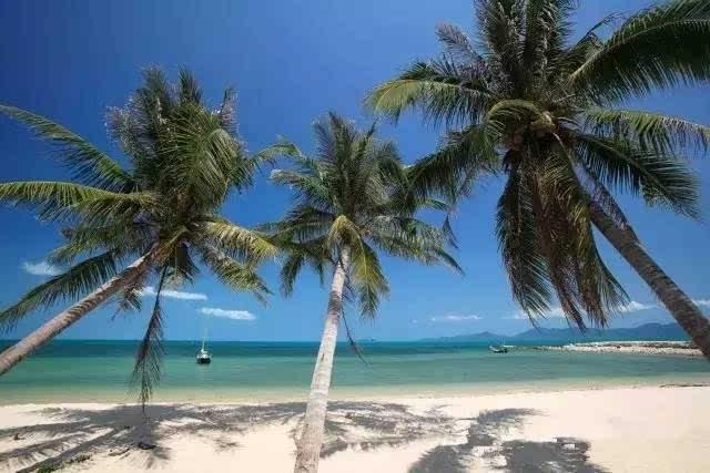 鲜为人知的泰国绝美海岛:第一站 苏梅岛