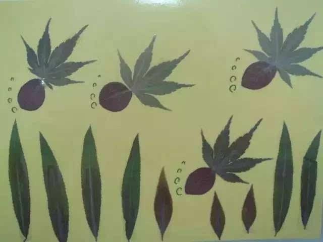 暑假跟孩子一起制作精美的树叶画吧!