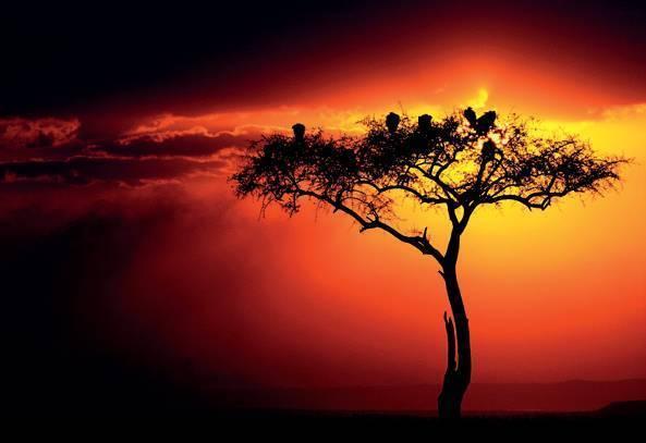 世界上有不绝的风景,我有不老的心情