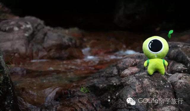 躲进深深深山里 大山深处的避暑山庄 安吉老树林度假