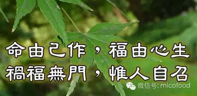 [传统文化]积善之家,必有余庆