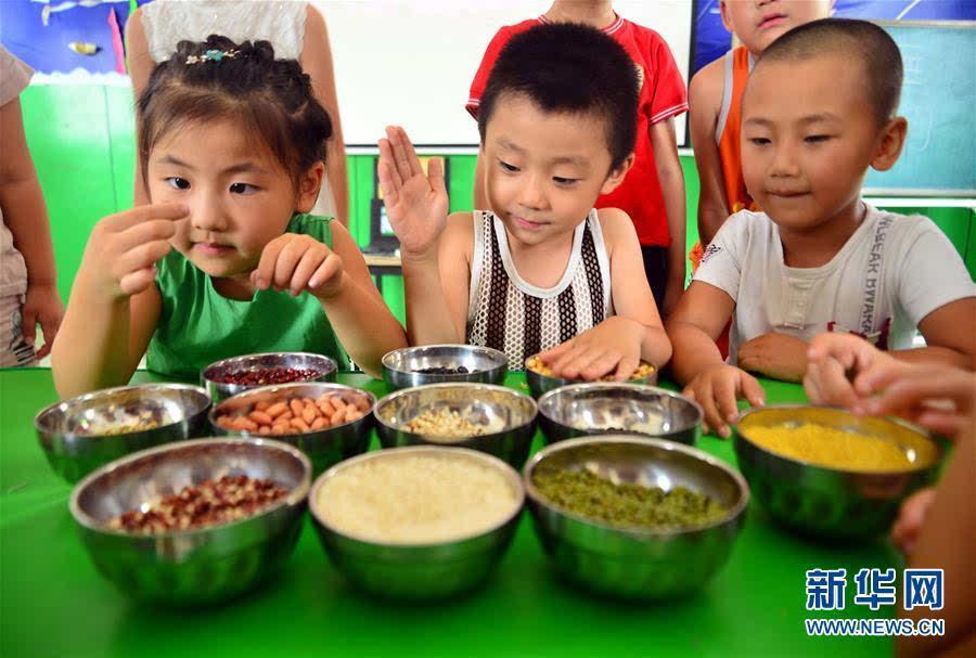 幼儿园五谷杂粮动物-识五谷 学节粮