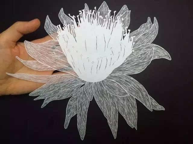 她凭一张白纸,征服了全世界!(图文) - 浪浪云 - 仰望星空
